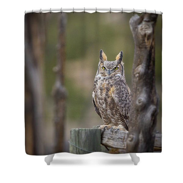 Unit 2 Ghost  Shower Curtain
