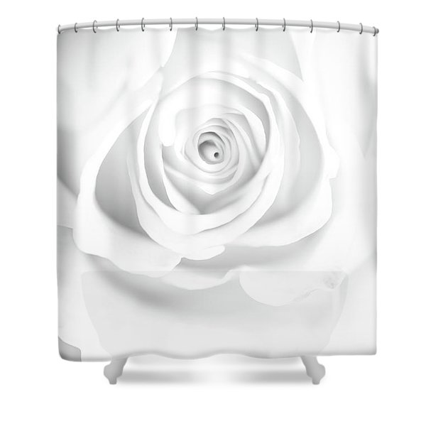 Untainted Shower Curtain