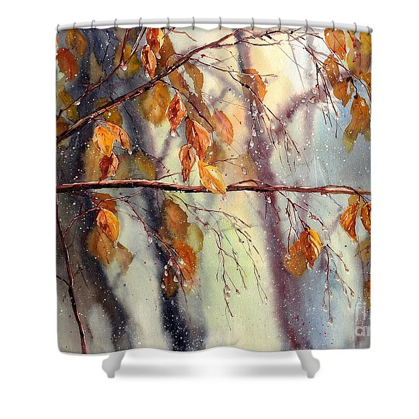 Vanishing Shower Curtain