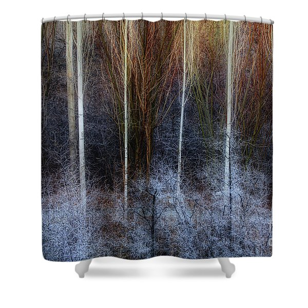 Veins Of Forest Shower Curtain