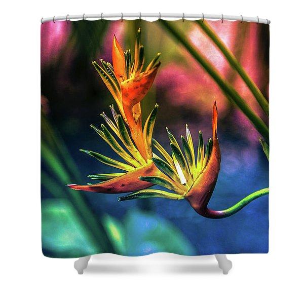 Vibrant Jungle Bird Shower Curtain