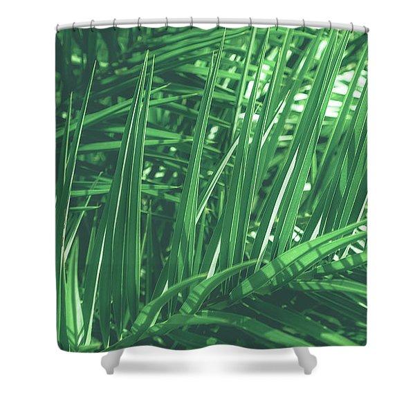Vintage Palms V Shower Curtain