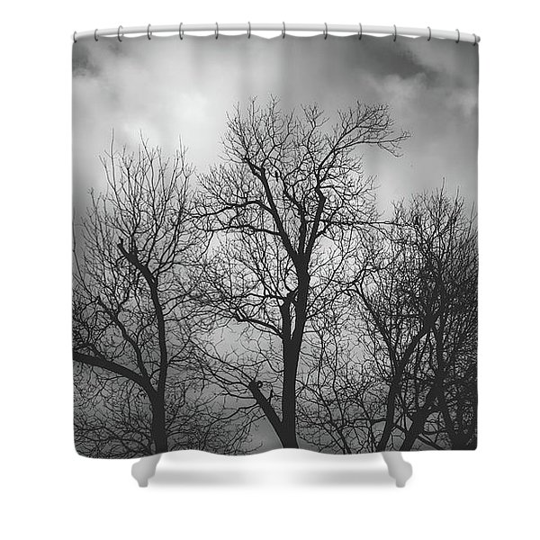 Waiting Bird Shower Curtain