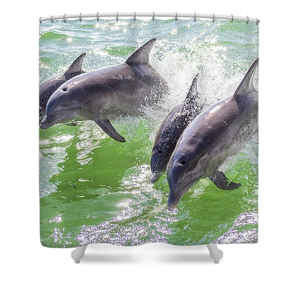 Wake Surfing Dolphin Family Shower Curtain