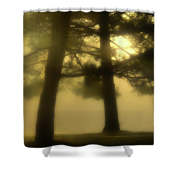 Waking From A Dream Shower Curtain