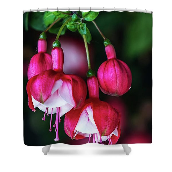 Wallpaper Flower Shower Curtain