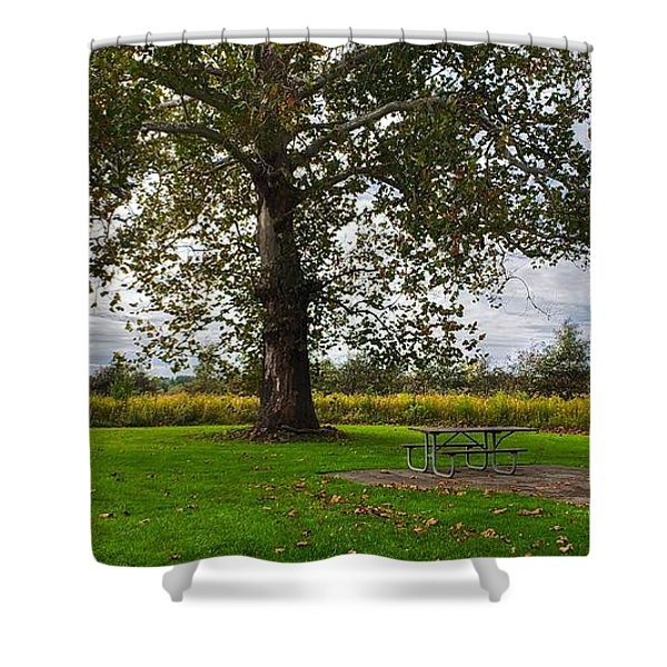 Walnut Woods Tree - 1 Shower Curtain