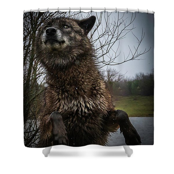 Watch The Eyes Shower Curtain