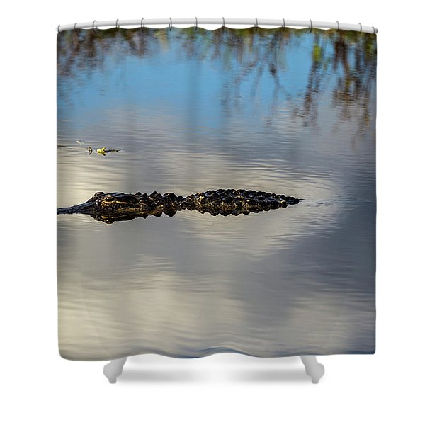 Watery Predator Shower Curtain