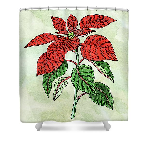 Watercolor Poinsettia Plant Botanical  Shower Curtain