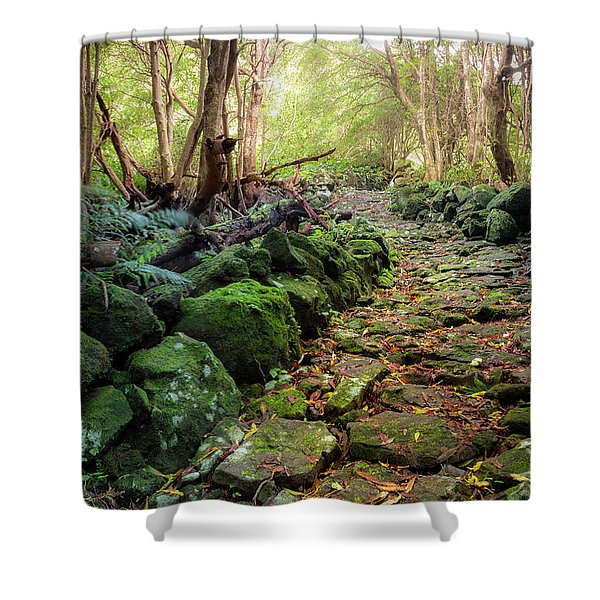 Waterfall Path Shower Curtain