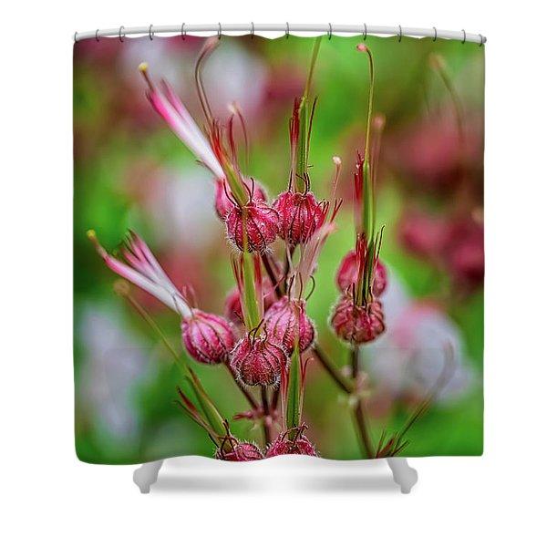 Welsh Flower Shower Curtain