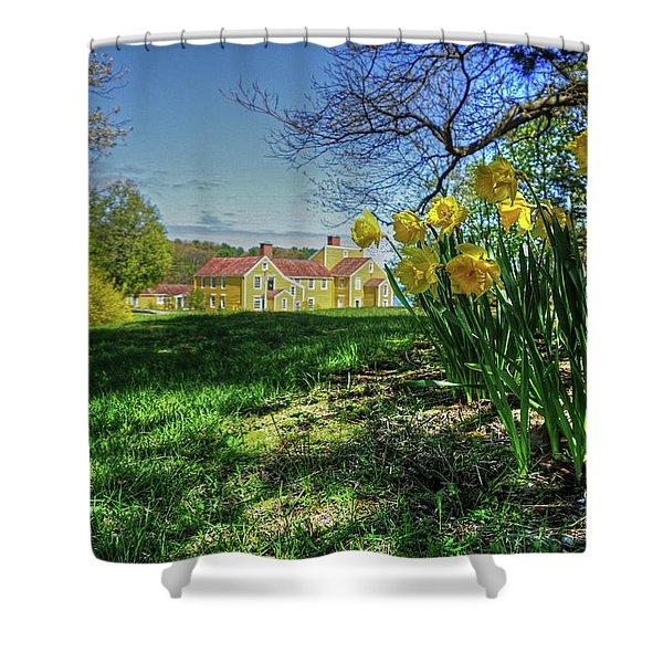 Wentworth Daffodils Shower Curtain