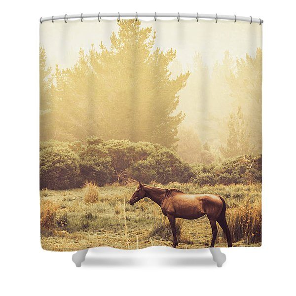 Western Ranch Horse Shower Curtain