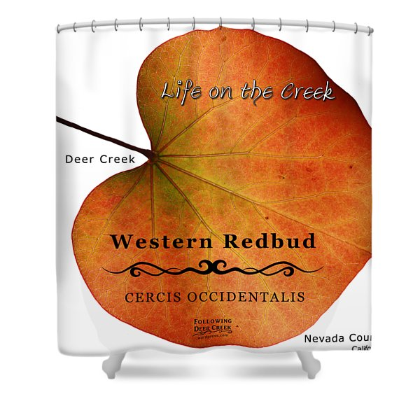 Western Redbud Shower Curtain