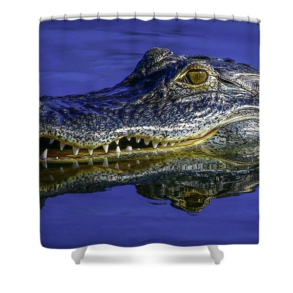 Shower Curtain featuring the photograph Wetlands Gator Close-up by Tom Claud