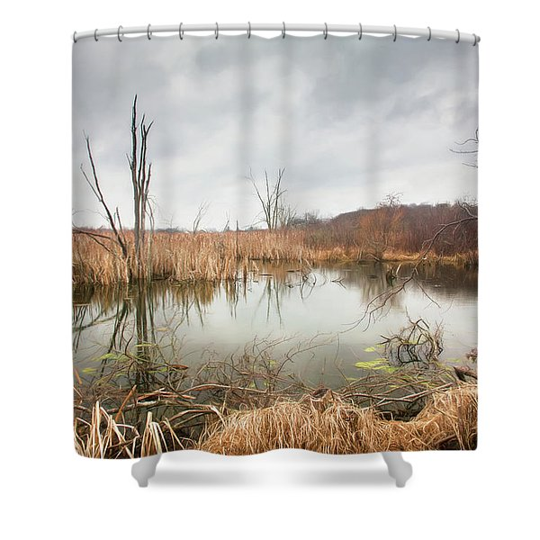 Wetlands On A Dreary Day Shower Curtain