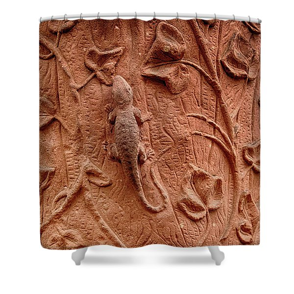 Whimsical And Lifelike Carvings On Heidelberg Castle Shower Curtain