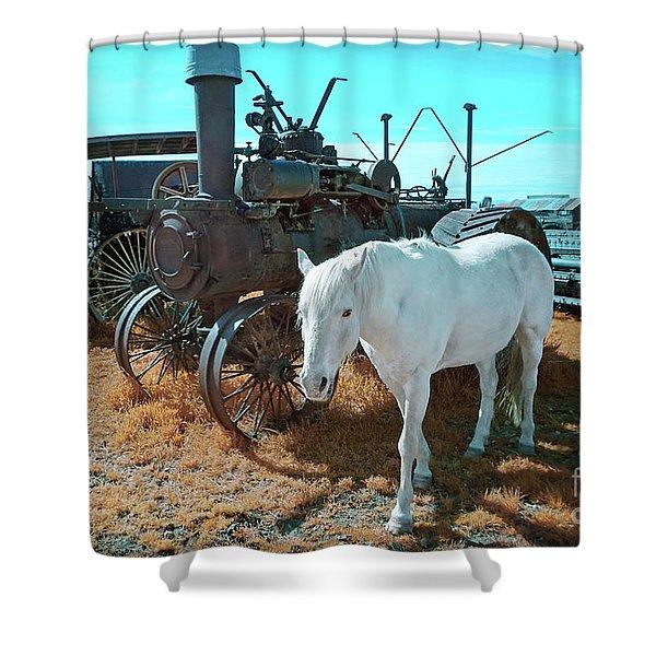 White Horse Iron Horse Shower Curtain