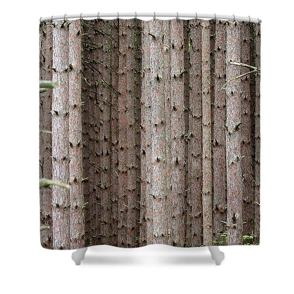 White Pines Shower Curtain