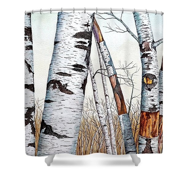 Wild Birch Trees In The Forest In Watercolor Shower Curtain