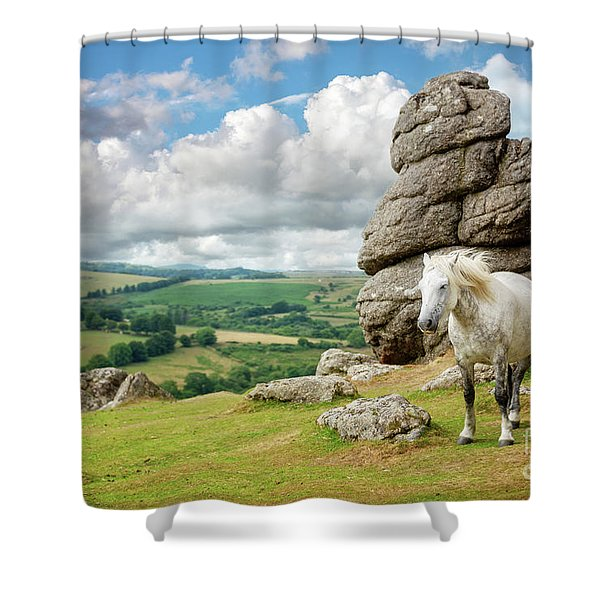 Wild Dartmoor Pony Shower Curtain