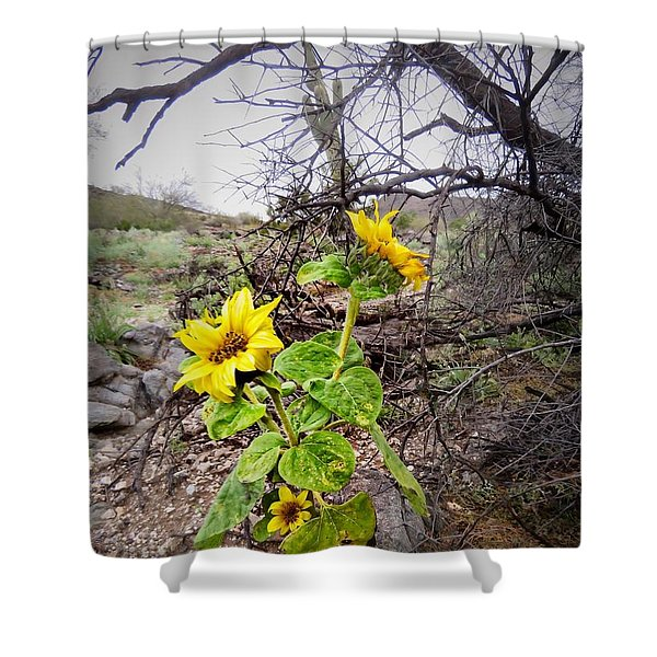 Wild Desert Sunflower Shower Curtain