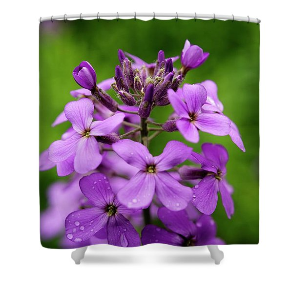 Wild Flowers In The Forest Shower Curtain