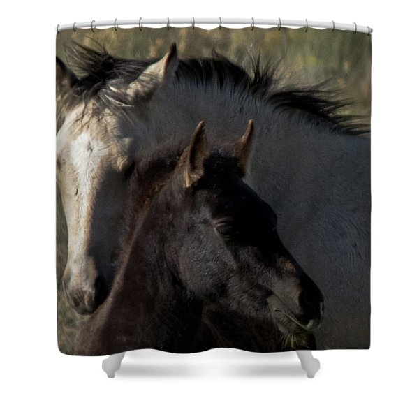 Shower Curtain featuring the photograph Wild Mustangs Of New Mexico 4 by Catherine Sobredo