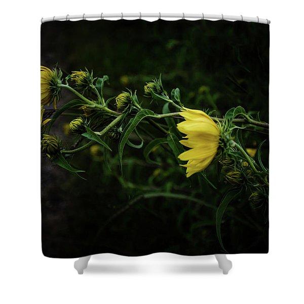 Windy Weeds Shower Curtain