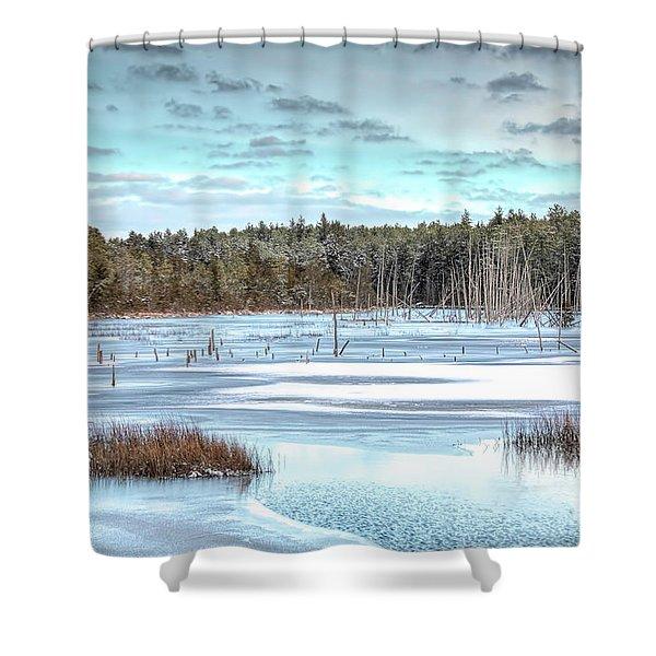 Winter At Lake Oswego Shower Curtain