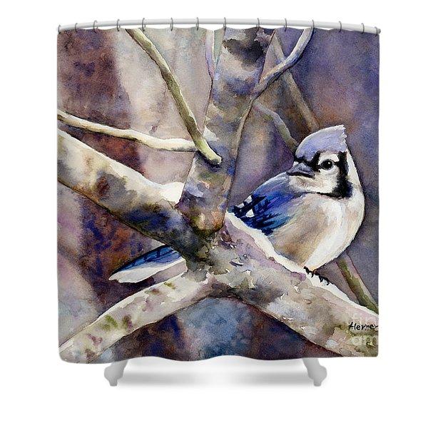 Winter Jay Shower Curtain