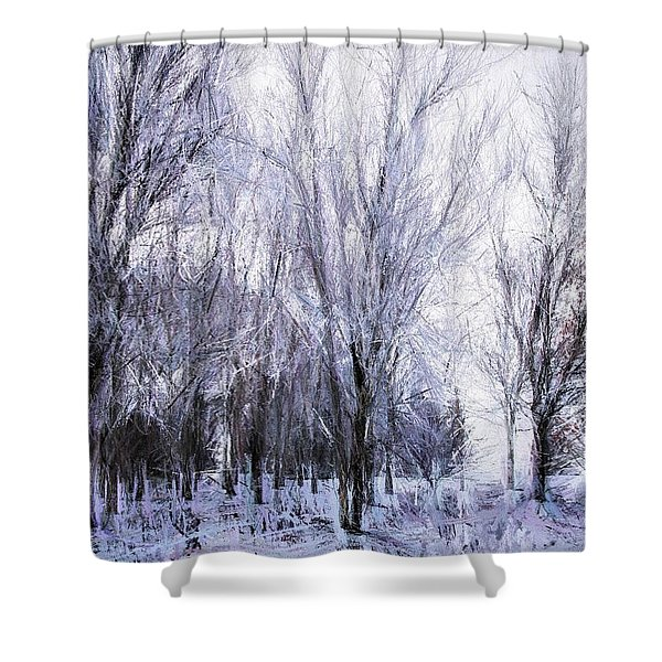Winter Lace Shower Curtain