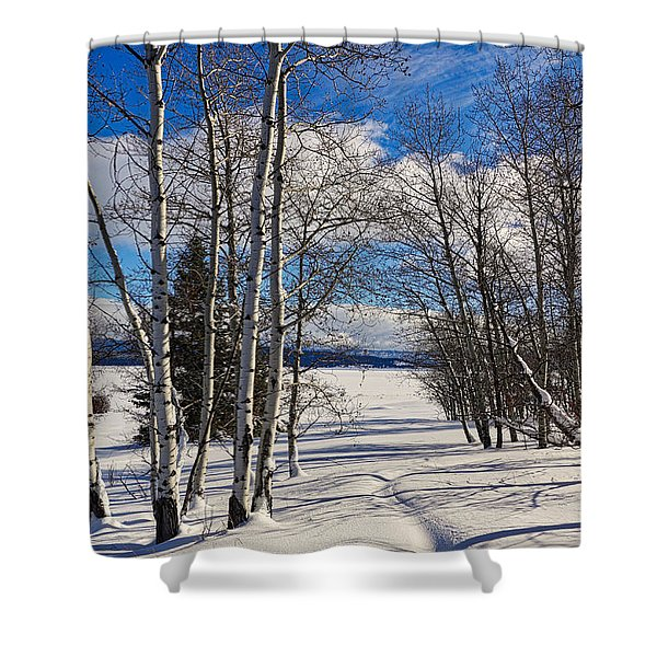 Shower Curtain featuring the photograph Winter Peace by Tom Gresham