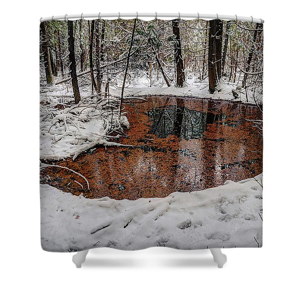 Winter Reflections Shower Curtain