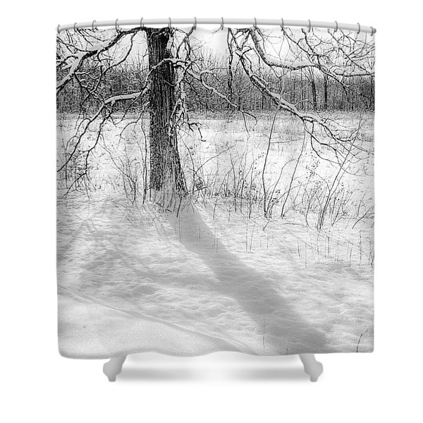 Winter Simple Shower Curtain