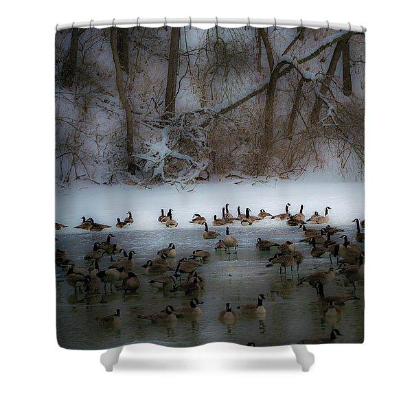 Winter Swim Shower Curtain