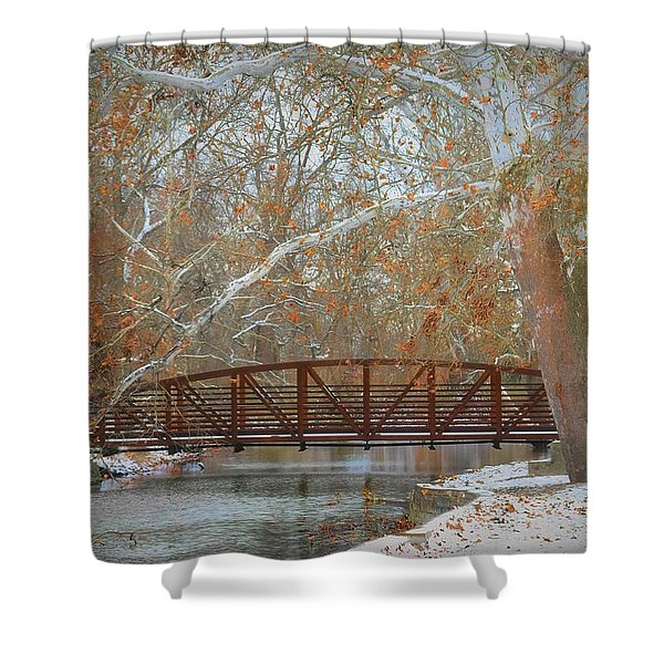 Winter Sycamores Shower Curtain