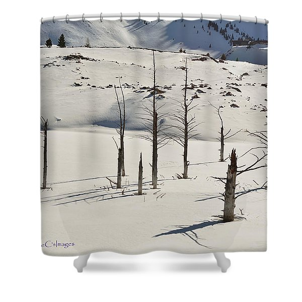 Wintertime At Quake Lake Shower Curtain