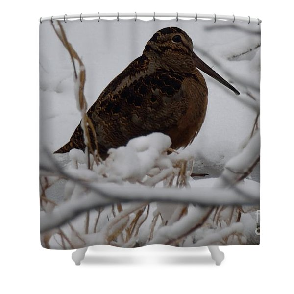 Wishing I Was Down On The Bayou Shower Curtain