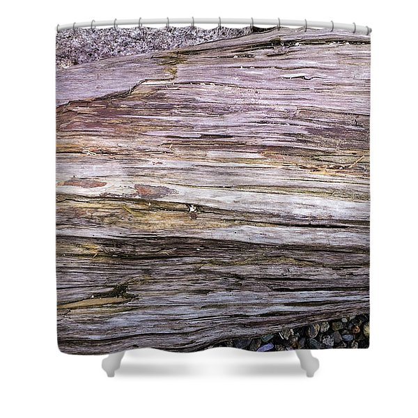 Shower Curtain featuring the photograph Wood Log In Nature No.28 by Juan Contreras