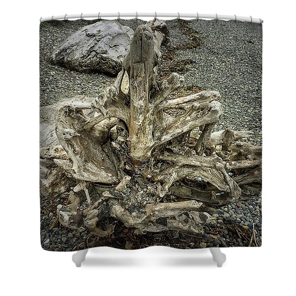 Shower Curtain featuring the photograph Wood Log In Nature No.36 by Juan Contreras