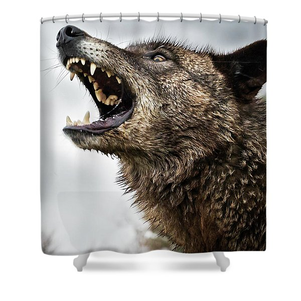 Woof Wolf Shower Curtain