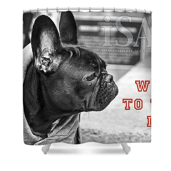 Word To The Dog Shower Curtain
