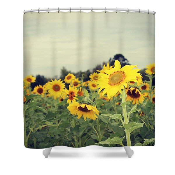 Yellow Fields Shower Curtain