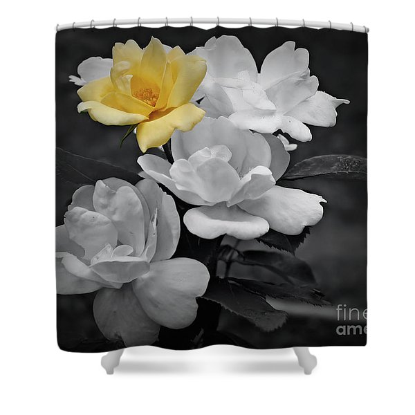 Yellow Rose Cluster Partial Color Shower Curtain