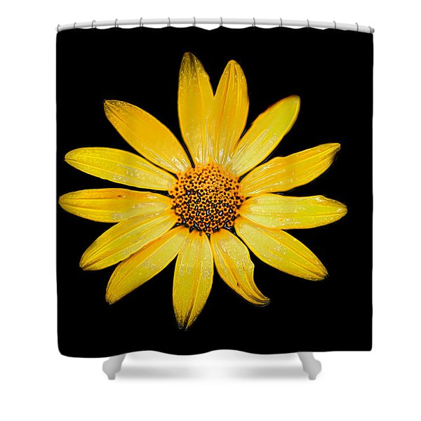You Look Glazed Shower Curtain
