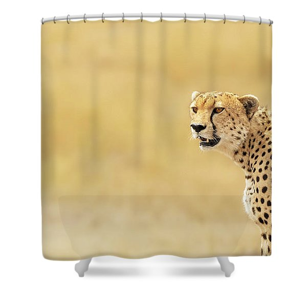 Young Adult Cheetah Banner Shower Curtain