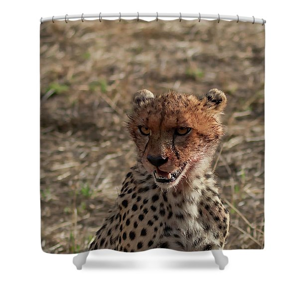 Young Cheetah Shower Curtain