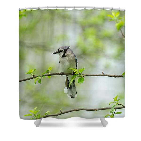 Young Jay Thinking Shower Curtain